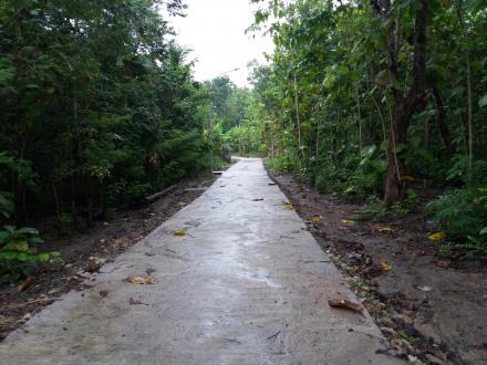 Corblok Jalan Lingkungan